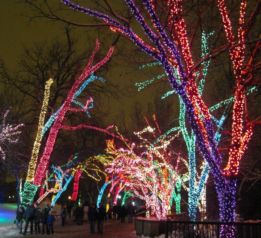 Zoolights+in+Lincoln+Park+Zoo+brighten+up+the+long+winter+nights.+The+final+day+for+Zoolights+is+Jan.+1.