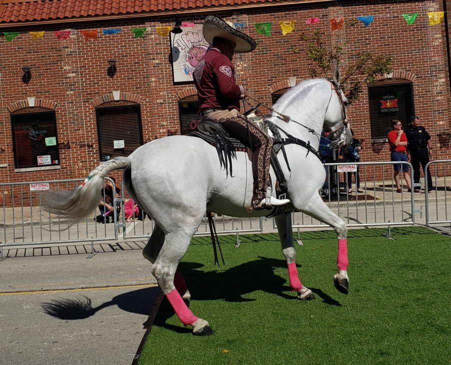Dancing+horses+open+the+Mexican+Independence+Day+event+in+downtown+West+Chicago+on+Sept.+14.+
