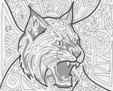 Coloring the wildcat is one of the activities that can be done in the calm room.